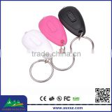 Promotion 395nm UV Purple Light Key Chain LED Factory