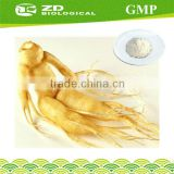 Free Sample Panax Ginseng Powder Extract for pharmaceutical raw materials