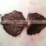 Salted Purple Perilla Leaf