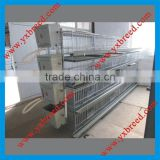H type poultry farming broiler cage