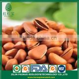 China Manufacture Organic Agriculture Siberian Open Pine Nuts in Shell
