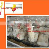 TAIYU-4 chicken layer poultry cages (With feeding system-feeder hopper,drinking system-nipple drinker)