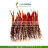 Wholesale Beautiful Natural Pheasant Feathers Fringe Craft All Wedding Favor Craft Trimmings