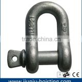 Hot Forged Stainless Steel AISI304/316 D Shackle/Bow Shackle US/European Type small stainless steel shackles