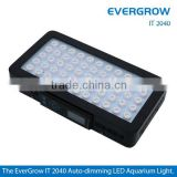 Evergrow IT2040 programmable wireless remote control bridgelux led aquarium light fixture coral reef