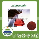 Top quality natural astaxanthin powder / pure astaxanthin powder ----Kingsci, leading manufacturer