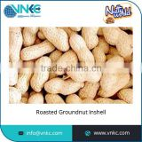 100% Natural Chemical Free Standard Quality Peanuts in Shell for Bulk Buyers