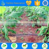 High quality agriculture drip irrigation tape for types of irrigation system Watering & Irrigation