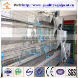 hot sale automatic chicken cage for Poultry farm