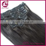 Grade 8A Virgin Hair 100g 8-32inch In Stock Top 10 Hair Straighteners Clip In Hair Extensions For Black Women
