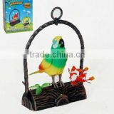 Battery Operated bird toy PAF638B