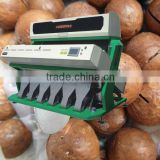 Excellent quality High output 384 Channels 6 slide ways VSEE Macadamia nuts ccd color sorter machine