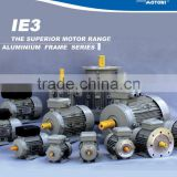 IEC Standard Three Phase IE3 Electric Motor with CE