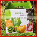 Top Quality Custom Active Green Fresh Fruit Corrugated Packaging Gift Box Wholesale
