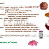 Polyphenol anthocyanin resveratrol from Grape leaf 100% natural ISO GMP HACCP KOSHER HALAL