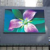 LED TV Display P5 with 960x960mm LED Cabinet for Outdoor Advertising Screen Showing
