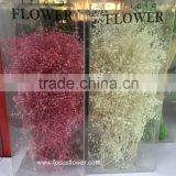 Pretty Flower Bouquet Boxes Colorful Gypsophila With Reasonable Price