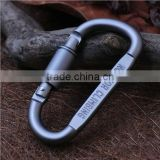 2015 Carabiner Screw Lock Bottle Hook Buckle Hanging Padlock Key Chain for Camping