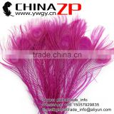ZPDECOR Leading Supplier Wholesale Cheap Full Eye Dyed Hot Pink Long Peacock Tail Feathers for Sale