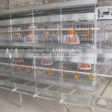 Automatic poultry farm equipment chicken cage