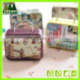 Custom printed Cute tin box with handle Small size Square Tin plate cans