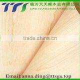 High quality 1.6MM thick longboard wood veneer for bamboo skateboards