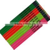 Personalized Assorted Neon colors Round Pencils with Matching Eraser