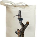 Eco-Friendly Cotton Canvas Bag, Shopping Promotional Tote Bag (HBCO-47)