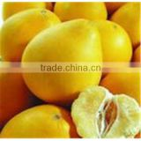 High purity Pomelo Peel Extract Naringin 98% at favorable price