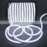24v 110v 220v multiple color neon led tube light                                                                         Quality Choice