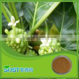 Hot Selling High Quality noni juice powder