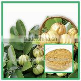 Pure Garcinia Cambogia Extract Chinese Weight Loss Pills