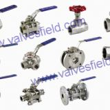 Threaded Ends SS Valves