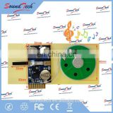 Custom greeting card sound module