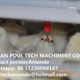 Congo Sale Poultry Farm Equipment - Broiler Cage & Meat Chicken Cage & Chicken Coop in Broiler House & Chicken Shed