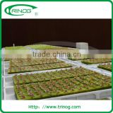 Hydroponic rock wool for agriculture purpose