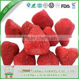 2015 OU CERTIFICATED DRIED FRUIT certificated dried fruit chips OFCHINESE FD FRUIT FREEZE DRIED STRAWBERRY WHOLE DR