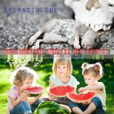 Liquid Rat Poison Bromadiolone 0.5%, 0.25% in Rodenticide