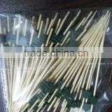Eco-friendly Fruit Kabob Sticks Bamboo Skewerw with Green Different Plant Patern.