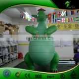 Inquiry About Big Belly Dragon, Inflatable Green Dragon Toys