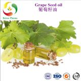 Grape Seed Oil essential oil factory wholesale pure natural organic best price manufacturer