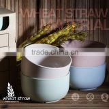Best Quality New Product Wheat Straw Bowl