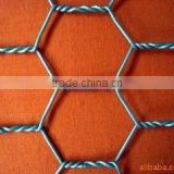 PVC Coated Galvanized Hexagonal Wire Netting (Factory & Exporter) hexagonal wire netting