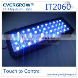 120W LED Aquarium Fish Tank Lamp Reef Live Coral LED Hood Blue White Grow Lights Led Aquarium Lights Evergrow IT2060