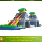 cheap giant inflatable water slide for adult on sale/adult size jumping castle inflatable water slide/commercial water slide