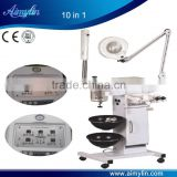 Inquiry about 10 in 1 facial machine