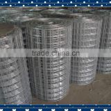 Bird cage welded wire mesh high quality best roll price (high quality+factory supply )