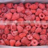 FD Dried Fruits-Frozen Dried raspberry with high quality for sale                                                                         Quality Choice