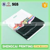 2015 Plastic Bag with Loop Handle Bag, Plastic Shopping Bag, Printed Plastic Bag, Polybags with High Quality