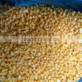 China best quality frozen sweet corn